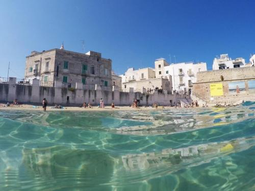 monopoli-more